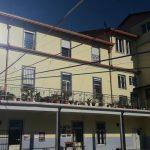Chat albanische Home •